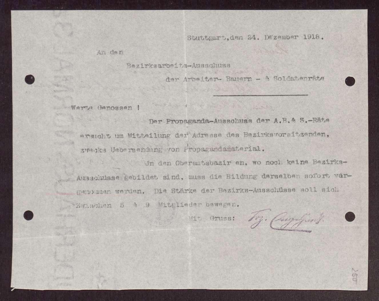Wahl, Zusammensetzung und Auflösung der Arbeiter- und Bauernräte im Oberamt Saulgau, Bild 2