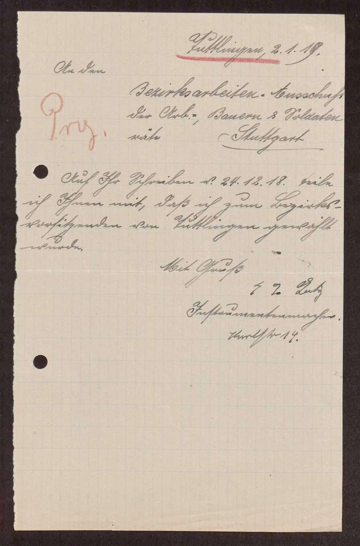 Wahl, Zusammensetzung und Auflösung der Arbeiter- und Bauernräte im Oberamt Tuttlingen, Bild 2