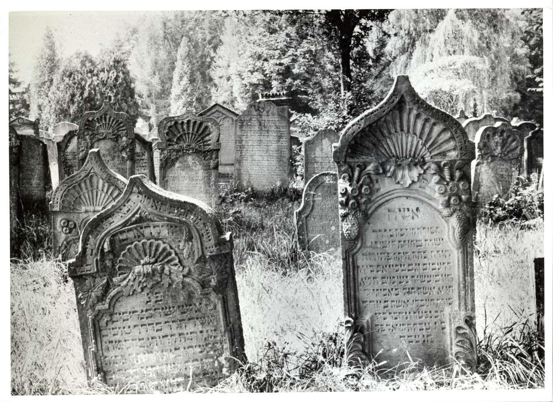 Neckarbischofsheim, HD; Jüdischer Friedhof, Grabsteine, Bild 1