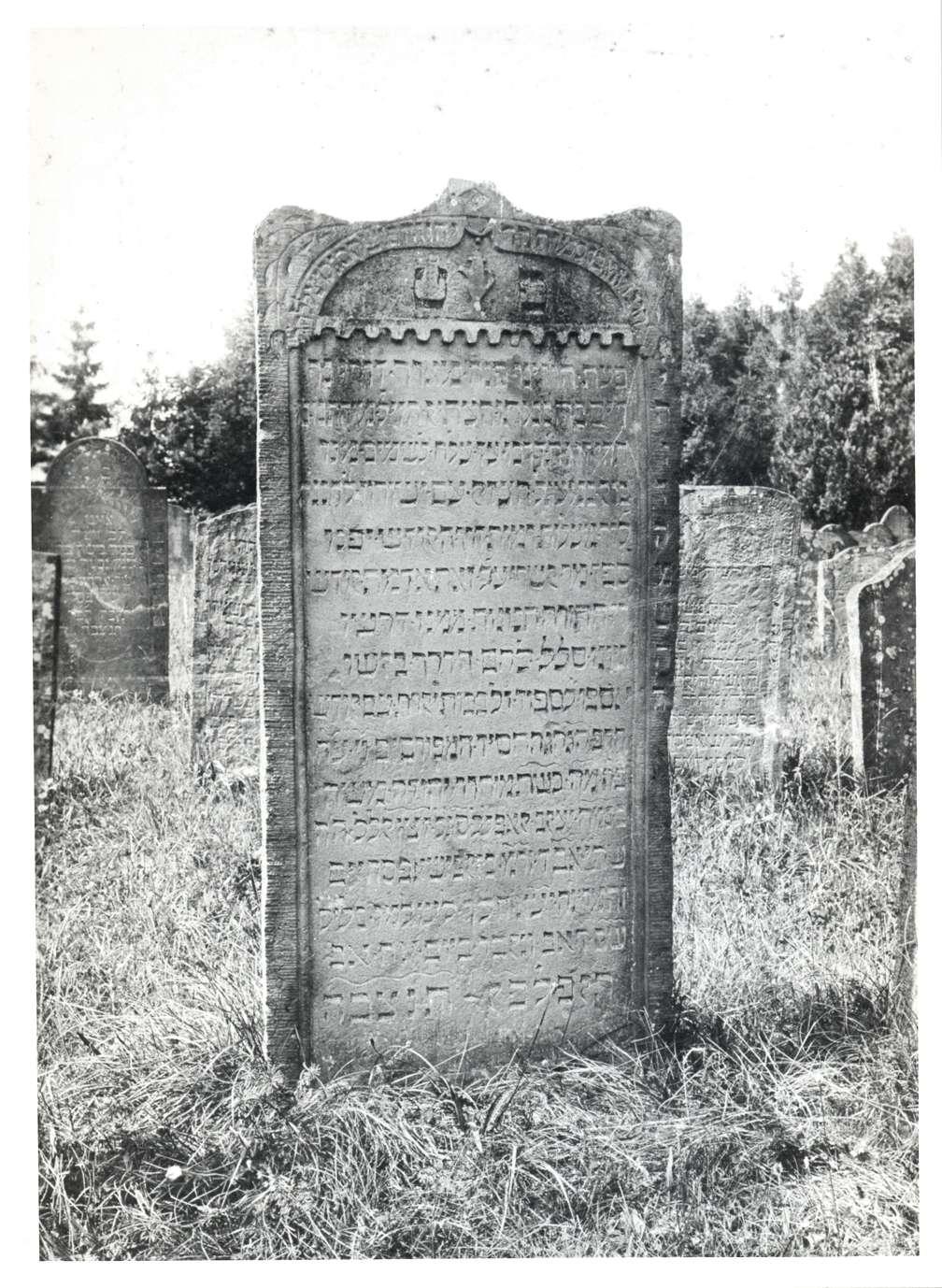 Neckarbischofsheim, HD; Jüdischer Friedhof, Grabstein, Bild 1