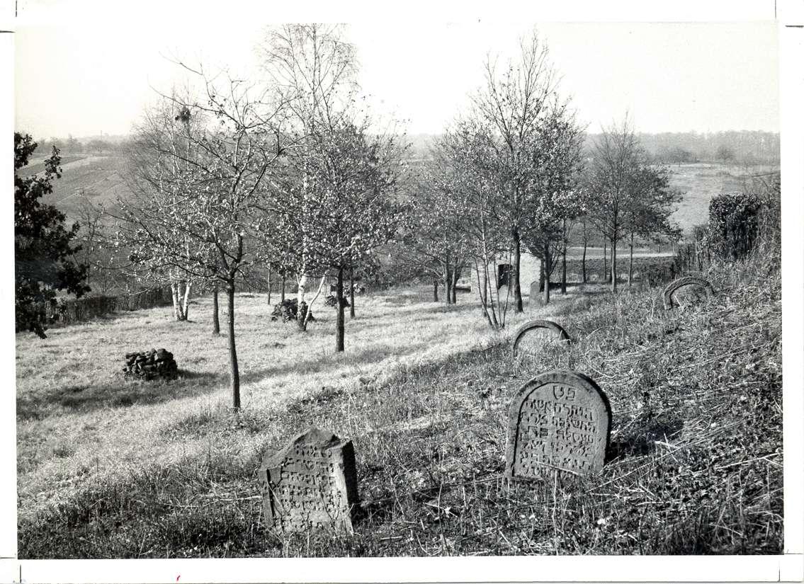 Neckarsulm, HN; Jüdischer Friedhof, Gräber, Bild 1