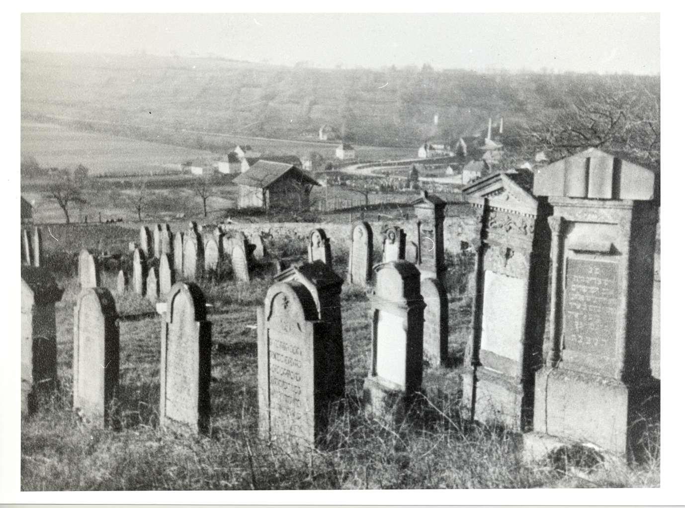 Neudenau, HN; Jüdischer Friedhof, Gräber, Bild 1
