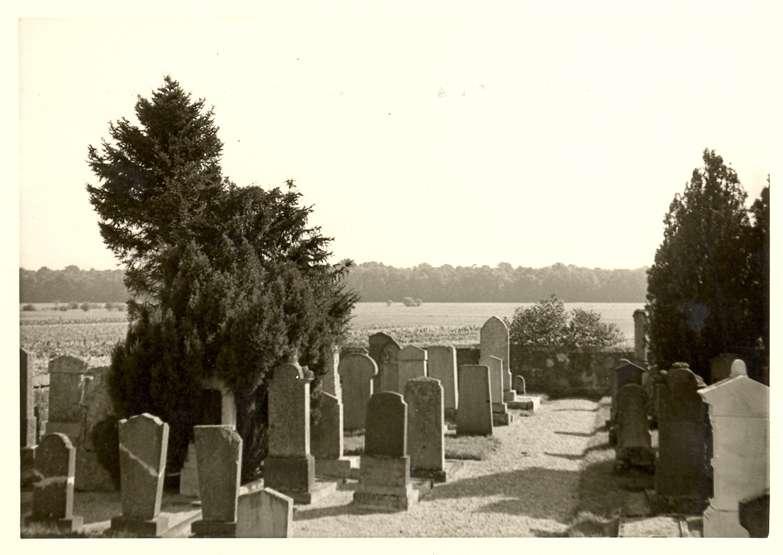 Nonnenweier, Schwanau, OG; Jüdischer Friedhof, Gräber, Bild 1