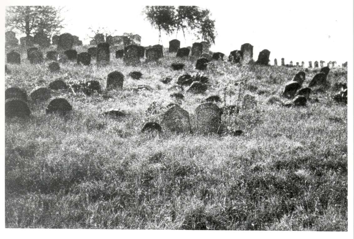 Külsheim, TBB; Jüdischer Friedhof, Gräber, Bild 1