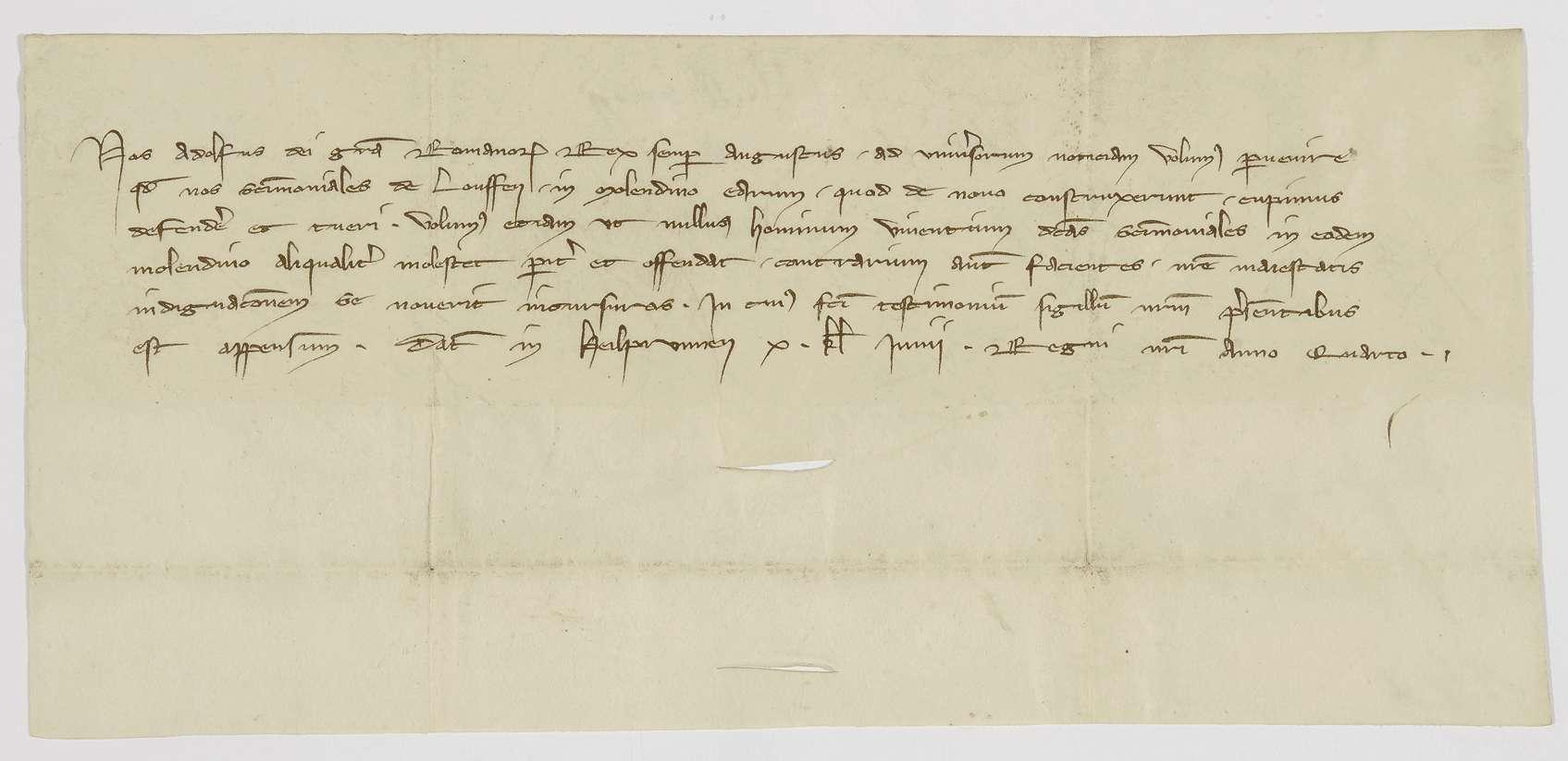 König Adolf von Nassau nimmt die Mühle des Nonnenklosters Lauffen in seinen Schutz., Bild 1