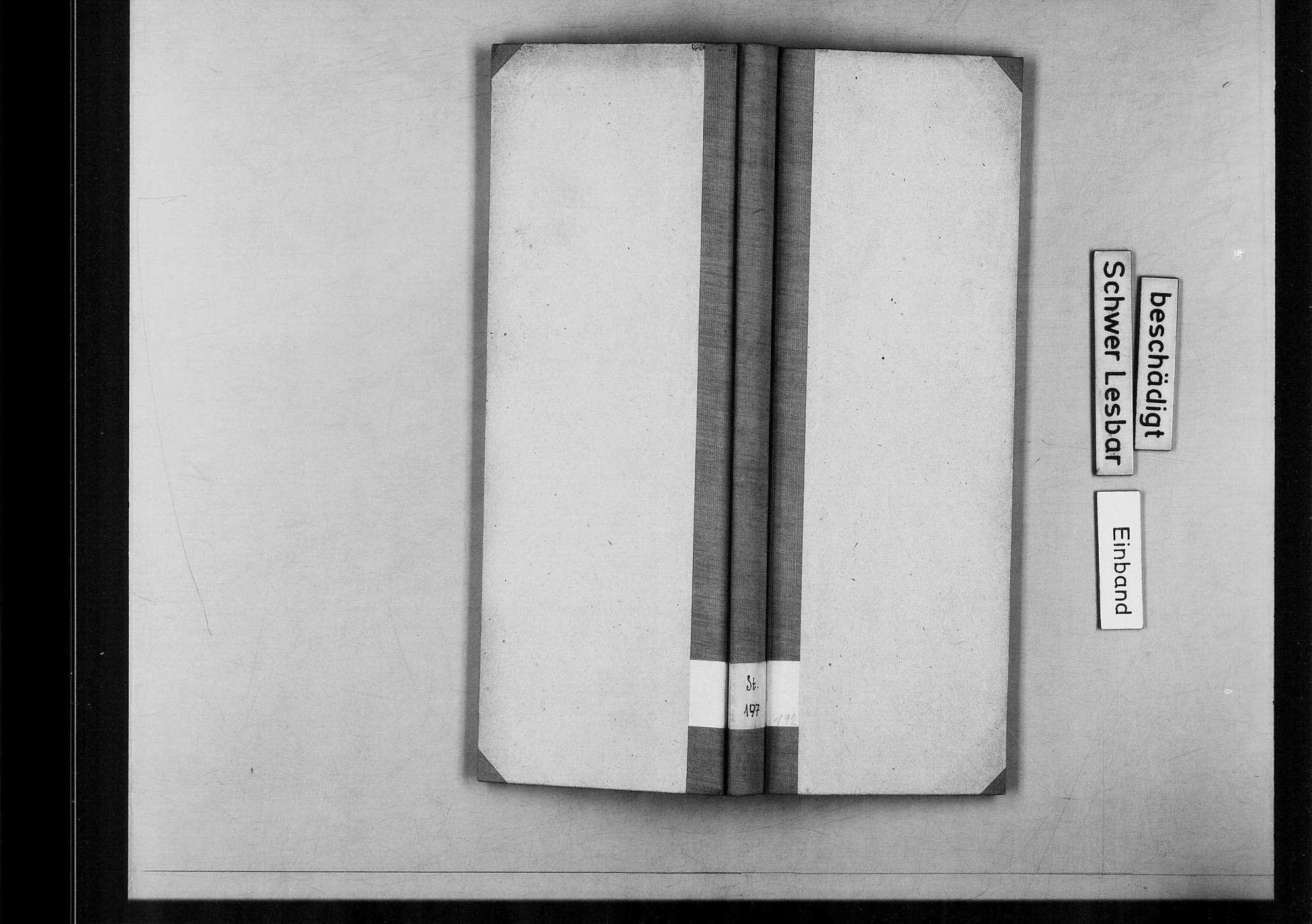 Leonberg, Bild 1