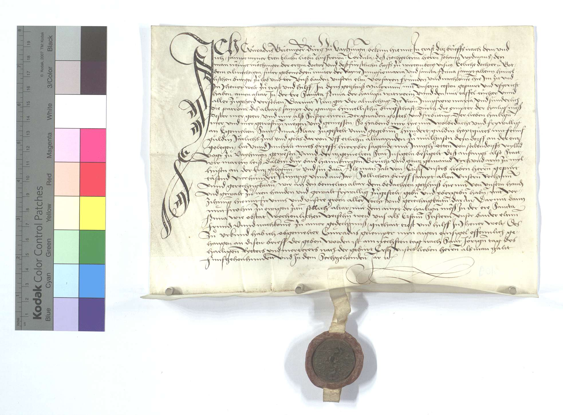 Stiftung der St. Anna Pfründe in dem Kloster Maulbronn von Conrad Gremper (Griemper) von Vaihingen, wegen der 5 Gulden jährlicher Gült aus der Allmende in Mühlhausen (Mülhausen) gestiftet., Text