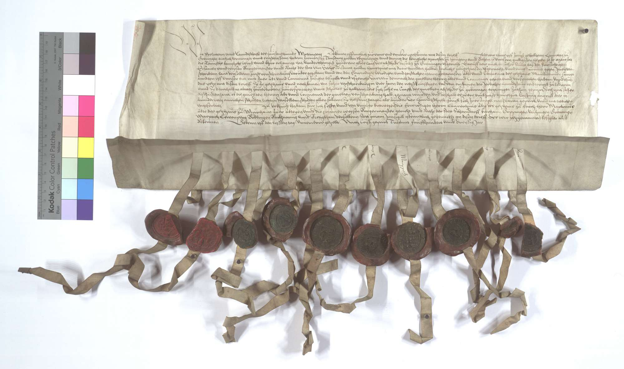 Prälaten und Landschaft des Fürstentums Württemberg (Wirtemberg) versprechen, das Kloster Maulbronn für eine gegenüber der Stadt Ulm übernommene Bürgschaft schadlos zu halten., Text