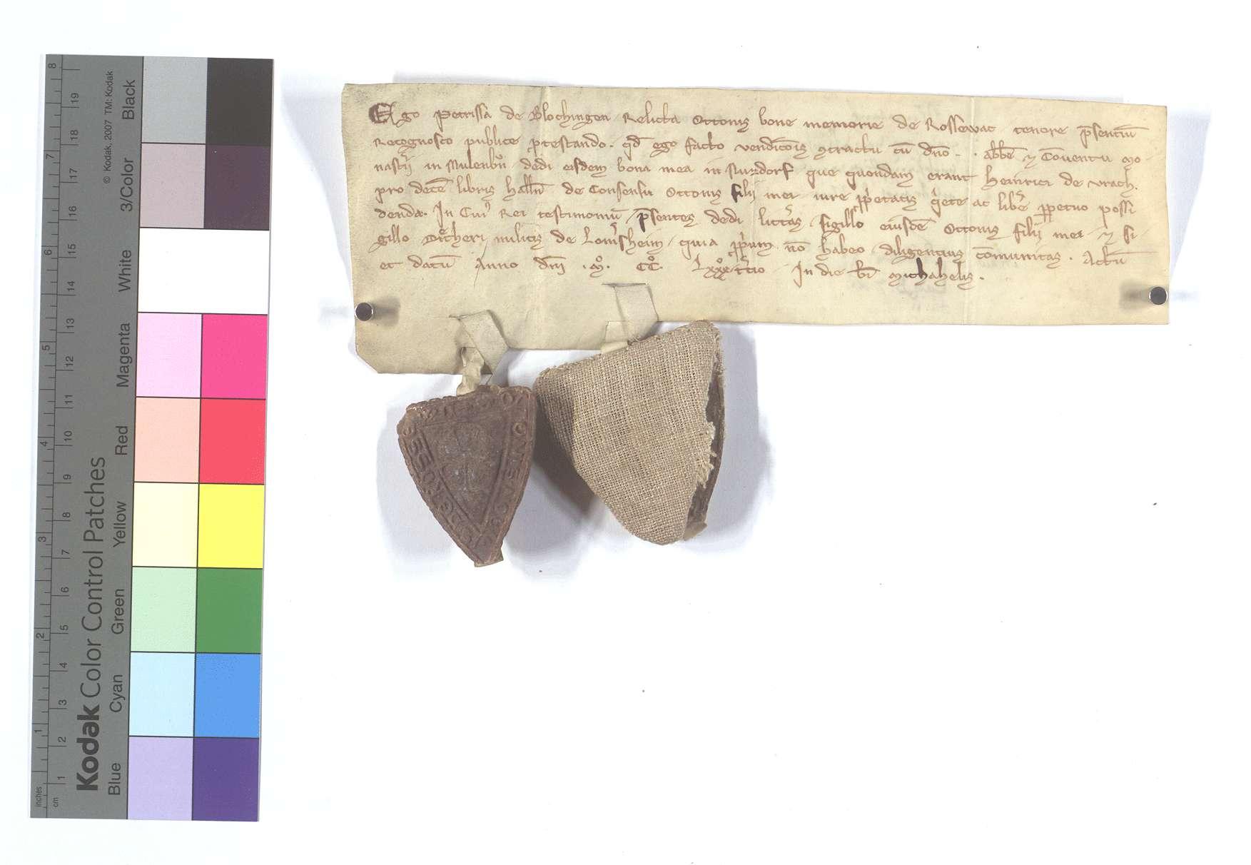 Petrissa von Plochingen, Witwe Ottos von Roßwag, verkauft mit Zustimmung ihres Sohnes Otto an Abt und Konvent von Maulbronn ihre Güter in Nußdorf, die ehedem Heinrich von Aurich gehörten, um 10 Pfund Heller., Text