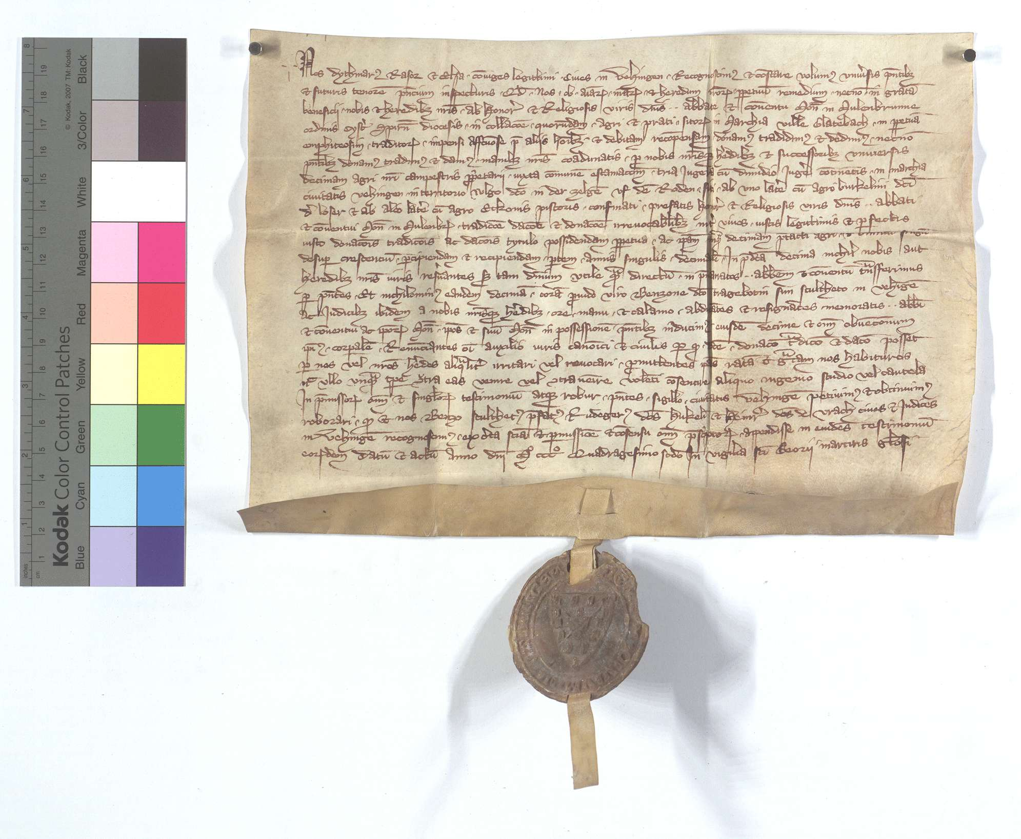 Erblehensrevers Dietmar (Dytmar) Rasors von Vaihingen (Vehingen) gegen das Kloster Maulbronn um die Güter in Glattbach (Glatebach)., Text