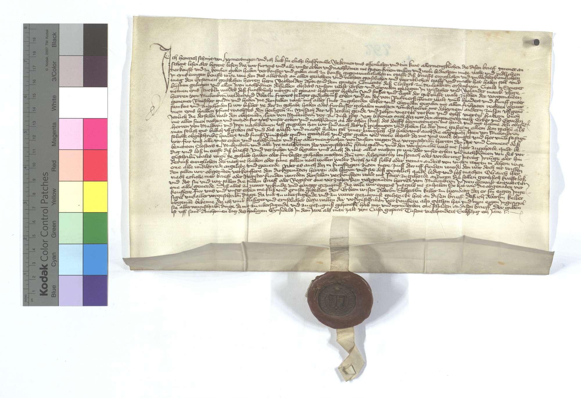 Heinrich Schmit (Schmyt) zu Heimerdingen (Heymertingen) verkauft seinen Wald in Weissach und Bonlander Markung dem Kloster Maulbronn., Text