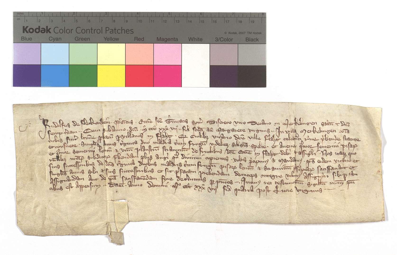 Mandat des Propsts der St. Trinitatiskirche in Speyer an den Dechant von Merklingen, dem Pfarrvikar in Flacht zu den ausgesetzten Pfründgefällen dort behilflich zu sein., Text