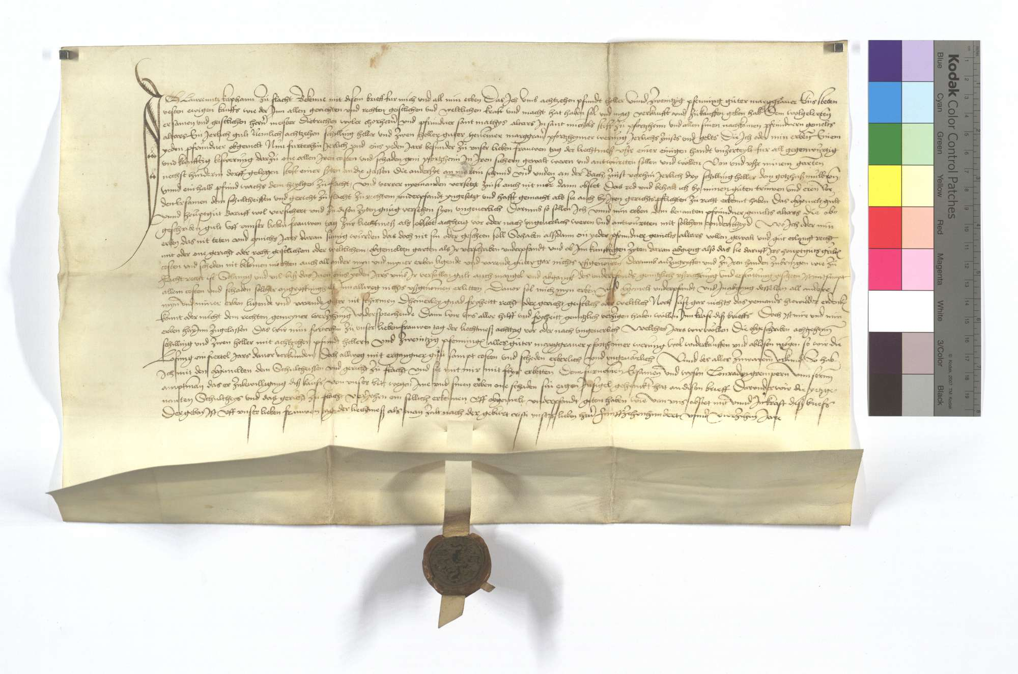 Gültbrief des Laurentz Kaphann von Flacht gegen das St. Michaelsstift in Pforzheim., Text