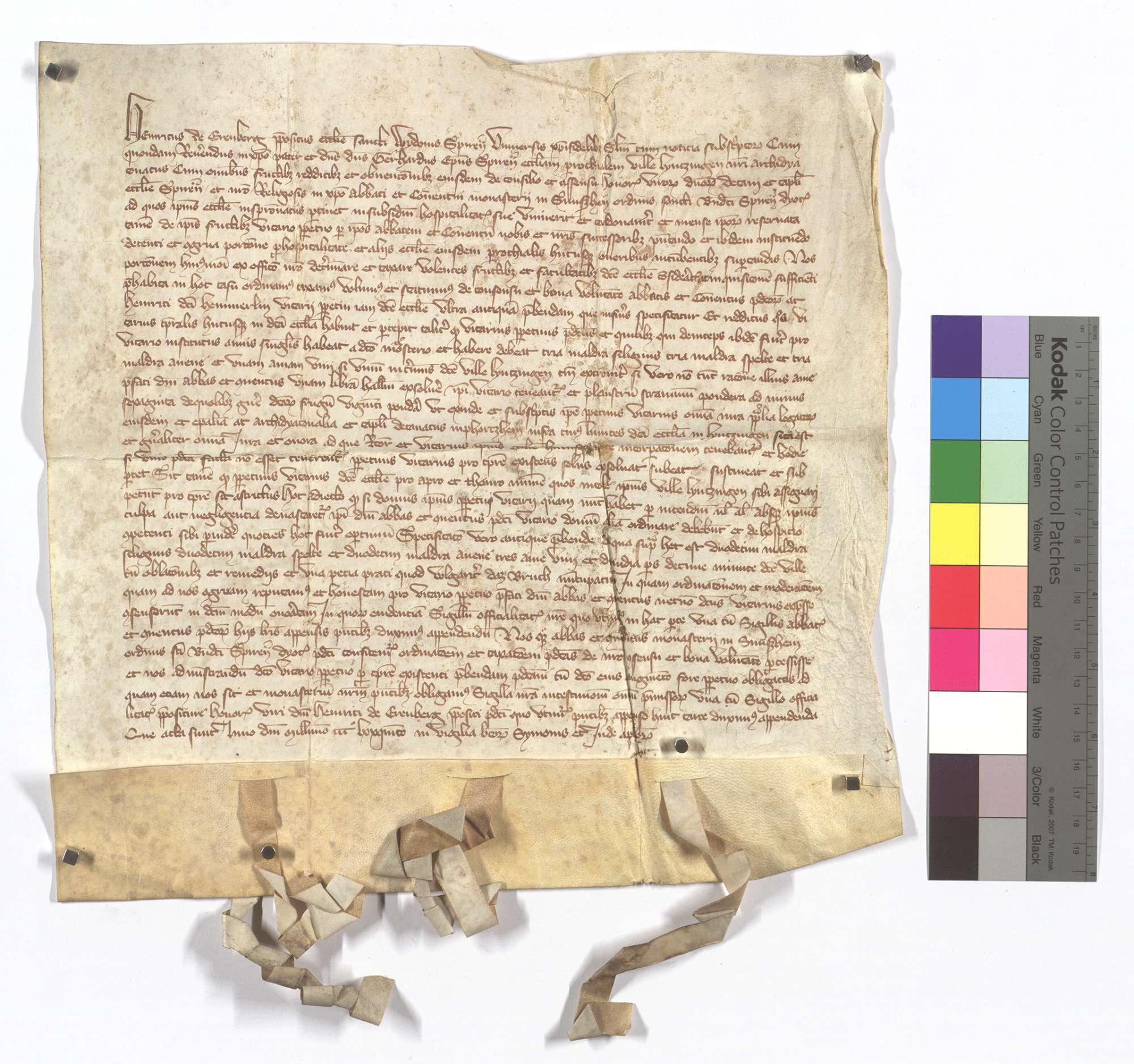 Pfarrkompetenz von Lienzingen (Lientzingen), wie solche von dem Propst von St. Guido in Speyer verordnet worden ist., Text