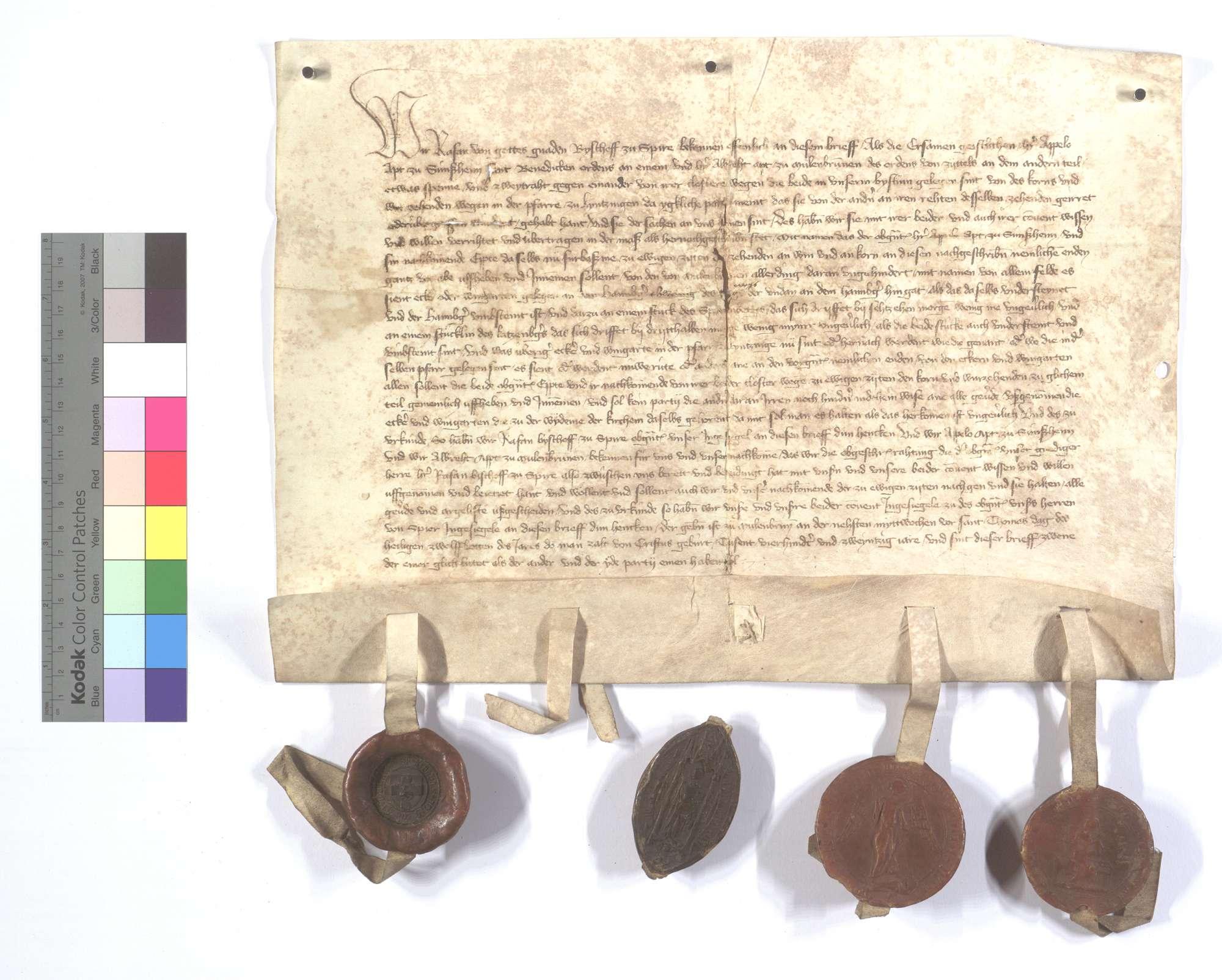 Bischöflich Speyrischer Vertrag zwischen den beiden Äbten von Sinsheim (Sinßheim) und Maulbronn wegen des Korn- und Weinzehnten in Lienzingen (Lientzingen)., Text