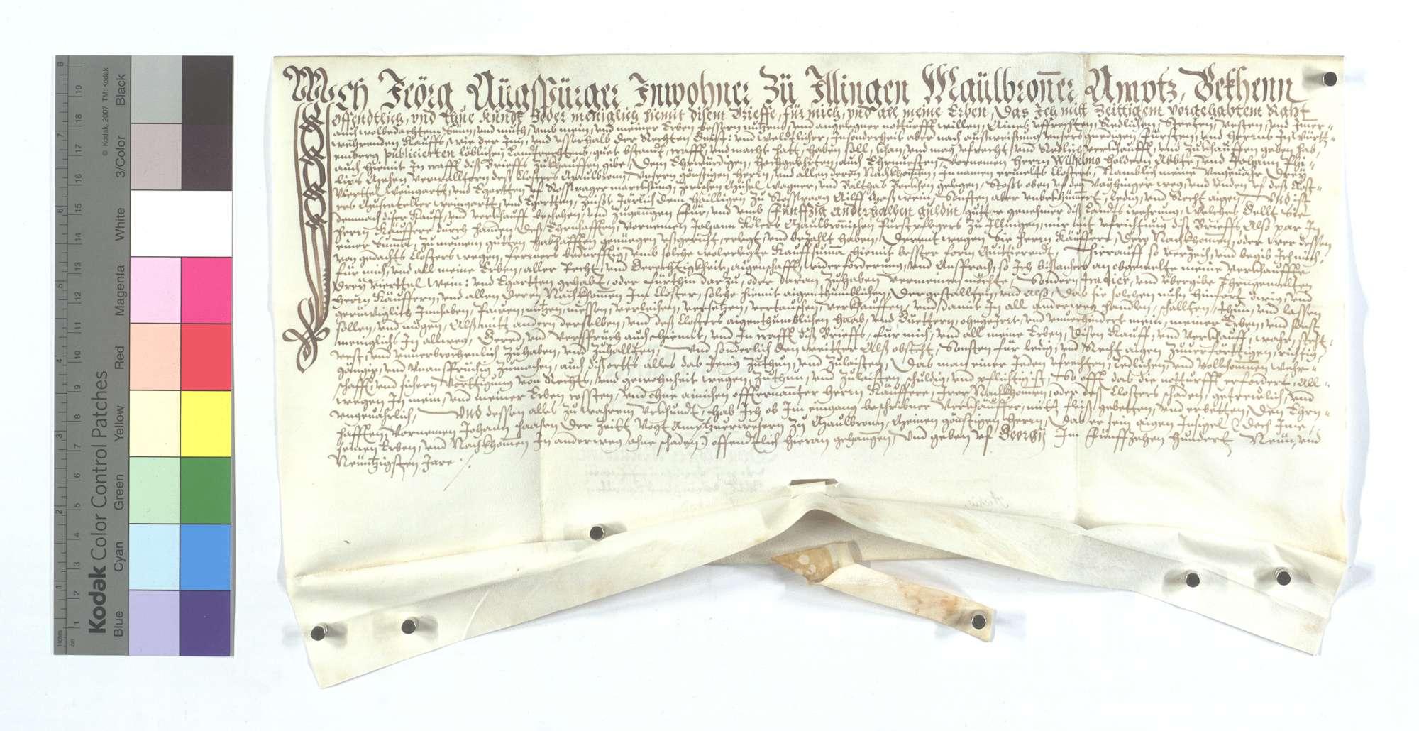 Jörg Augsburger (Augspurger) von Illingen verkauft dem Kloster Maulbronn 3 Quadratruten (Viertel) Weingarten und Eggerten (Egerten) auf Roßwager Markung., Text