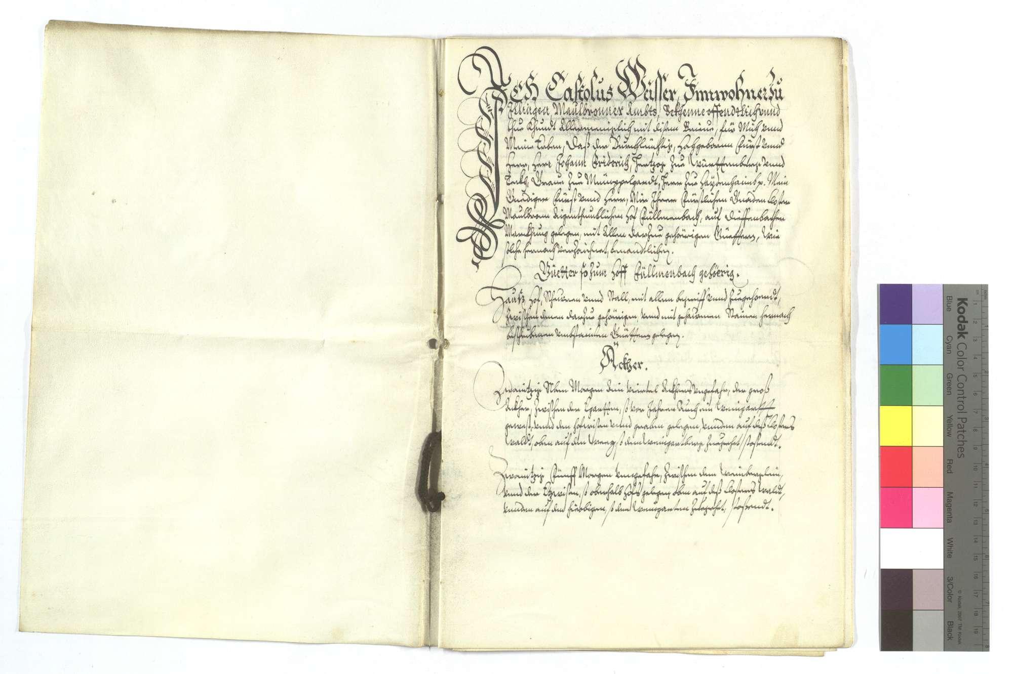 Verschreibung Castolus Weissers von Illingen, als Herzog Johann Friedrich ihm den Füllmenbacher Hof um 2.000 Gulden verkauft und noch ein bezeichnetes Stück Wald für 100 Gulden in den Kauf gegeben hat., Bild 2