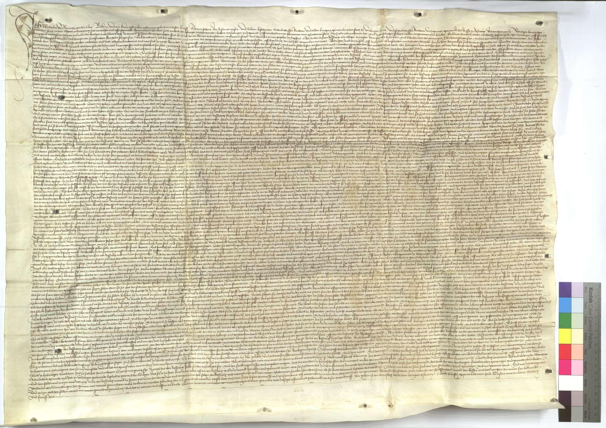 Urteil von Wilhelm von Münchingen und anderen von Adel zwischen denen von Vaihingen und Roßwag, dass jene Macht haben, auf derer von Roßwag Markung mit ihrem Vieh zu treiben., Text