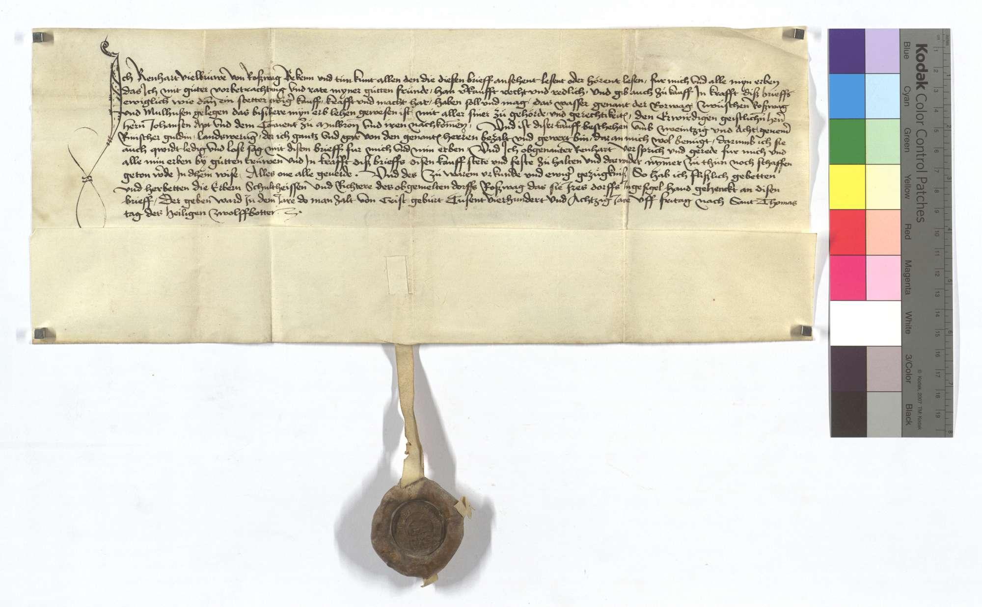 Reinhard Vielbrur verkauft dem Kloster Maulbronn ein Fischwasser zwischen Roßwag und Mühlhausen (Mülhausen)., Text