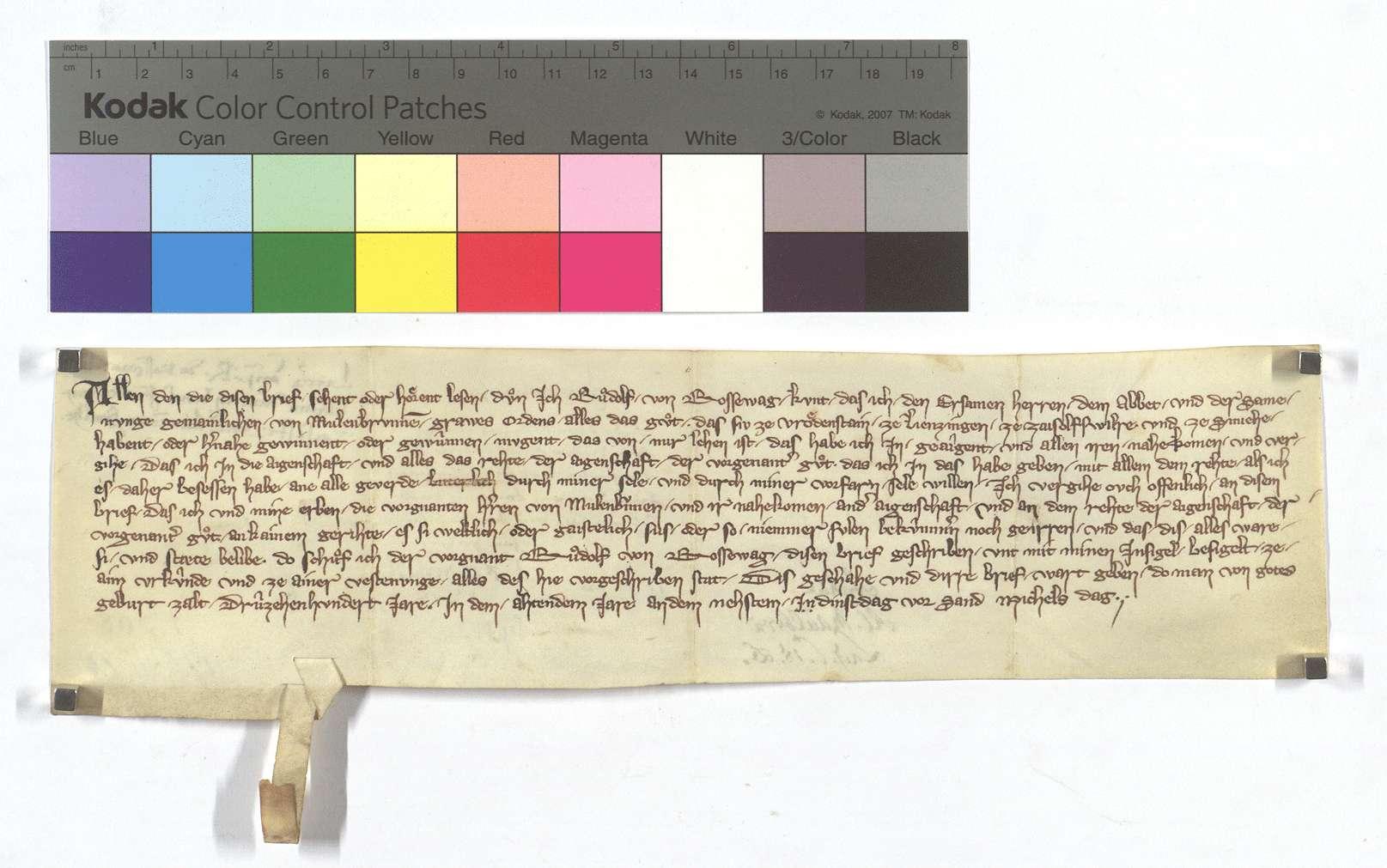 Rudolf von Roßwag befreit und eignet die Güter des Klosters Maulbronn in Zaisersweiher, Freudenstein, Lienzingen und Illingen, die von ihm zu Lehen gehen., Text