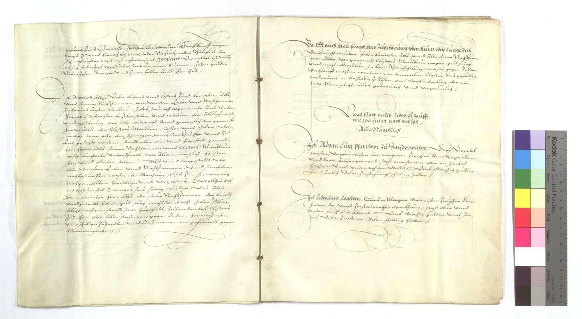 Erblehensrevers derer von Zaisersweiher um die von dem Kloster Maulbronn verkauften Wiesen im Schützinger (Schüzinger) Tal., Bild 3