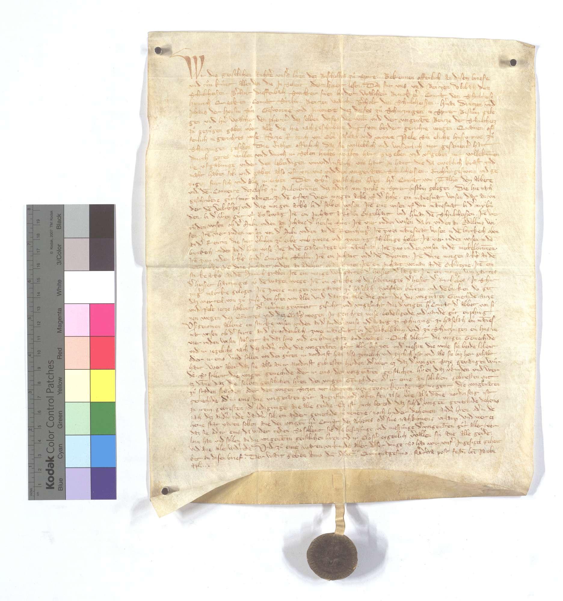Seiz Rorich von Hohenhaslach (Oberhaslach) und seine Frau, beide in Schützingen (Schüzingen) gesessen, übergeben dem Kloster Maulbronn all ihr Gut., Text