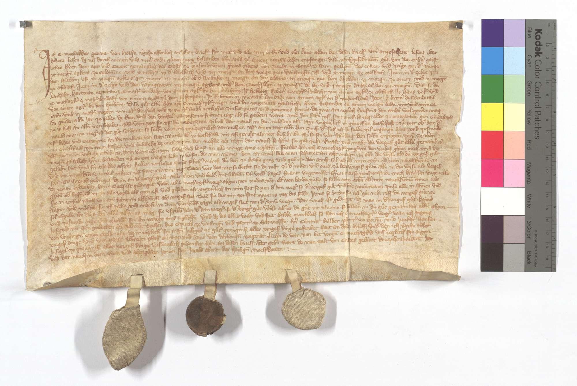 Revers Conrad Muchakkers von Horrheim um etliche Güter zu Gündelbach, aus denen er dem Kloster jährlich 6 Malter Roggen, 5 Malter Dinkel und 5 Malter Hafer (Habern) sowie 4 1/2 Pfund Heller Zins zu geben hat., Text