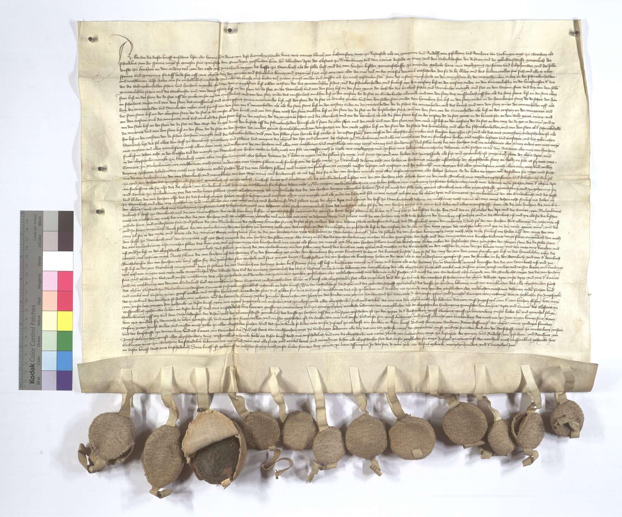 Vereinbarung (Richtung) zwischen dem Kloster Maulbronn und Steinbachhof, wie es mit dem Weidgang und dem Hof Steinbach gehalten werden solle., Text
