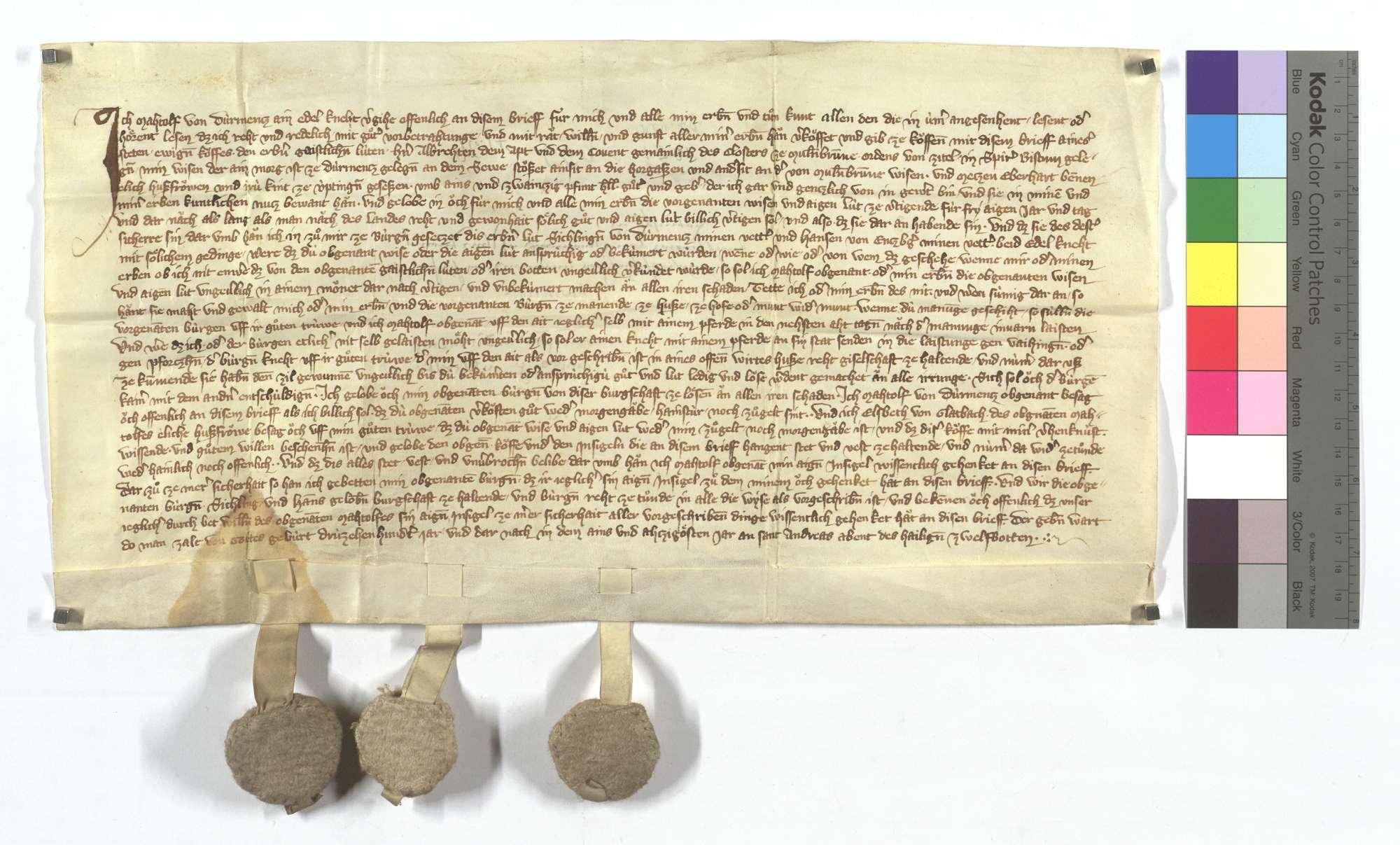 Machtolf von Dürrmenz verkauft dem Kloster Maulbronn eine Wiese in Dürrmenz und eine leibeigene Frau in Iptingen., Text
