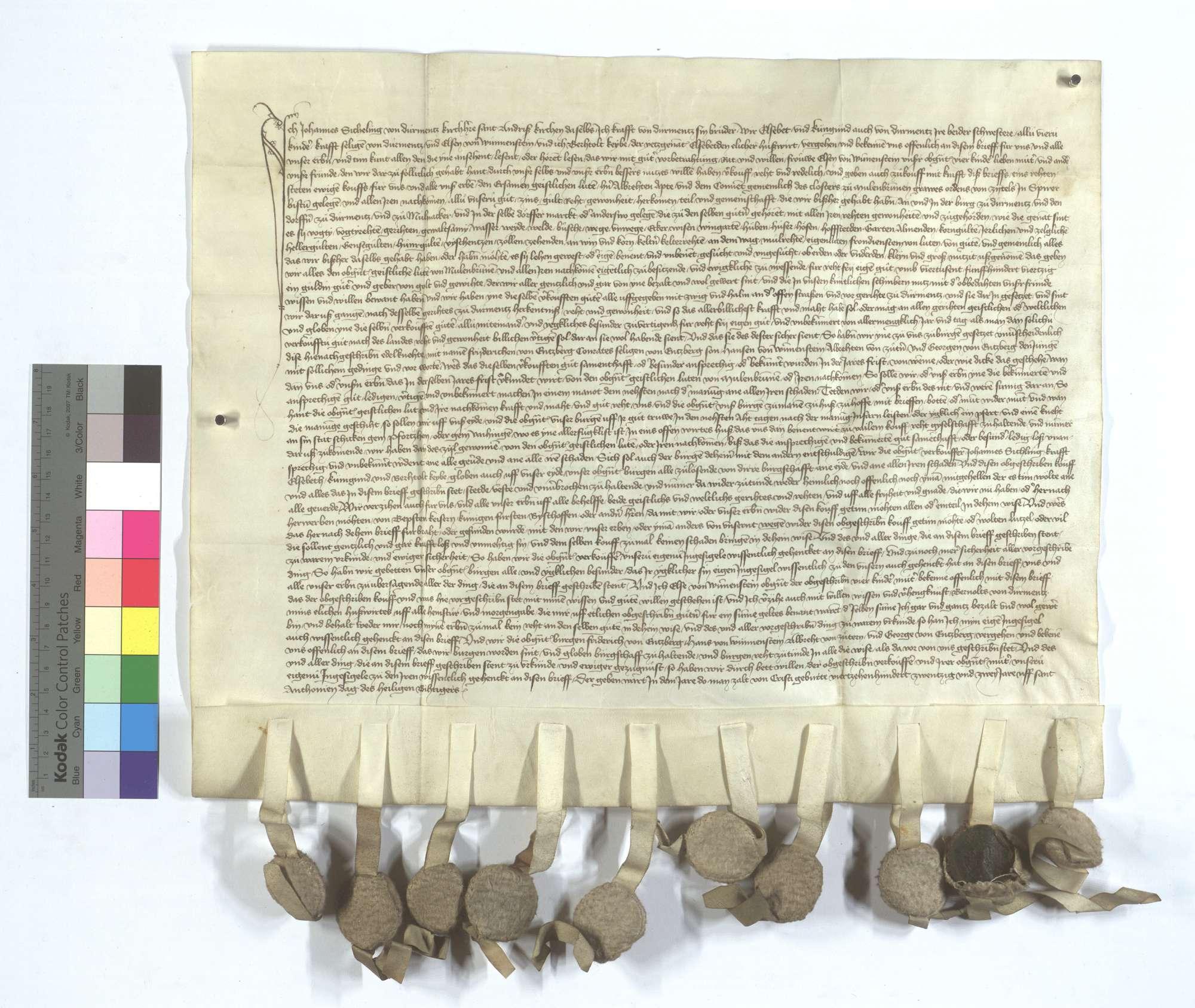 Johann Sicheling von Dürrmenz und seine Geschwister verkaufen dem Kloster Maulbronn all ihr Einkommen und Gerechtsame in Dürrmenz und Mühlacker (Mülacker)., Text