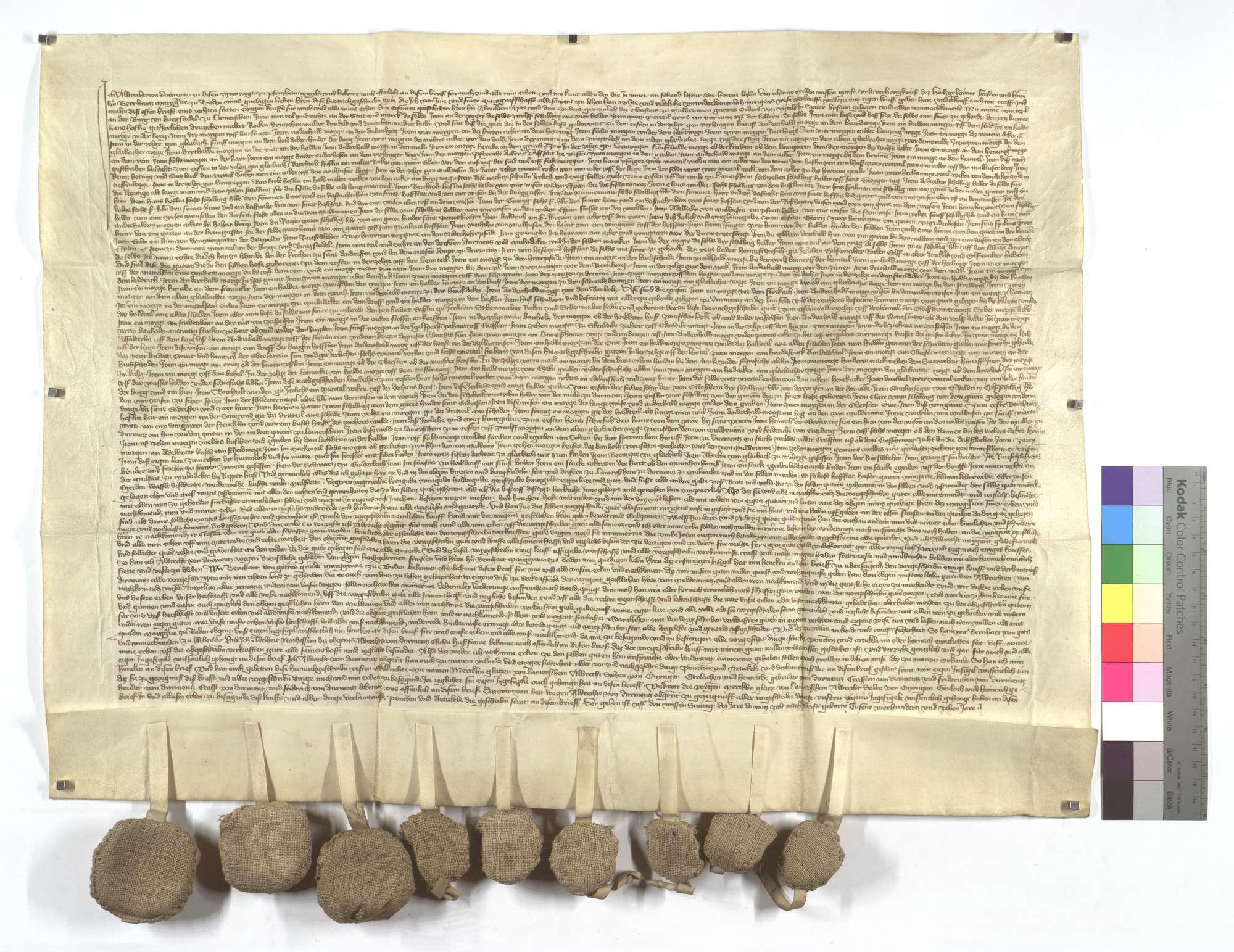 Albrecht von Dürrmenz, der Vogt von Pforzheim, verkauft dem Kloster Maulbronn all sein Einkommen und Gerechtsame in Lomersheim, Dürrmenz und Mühlacker (Mülacker)., Text