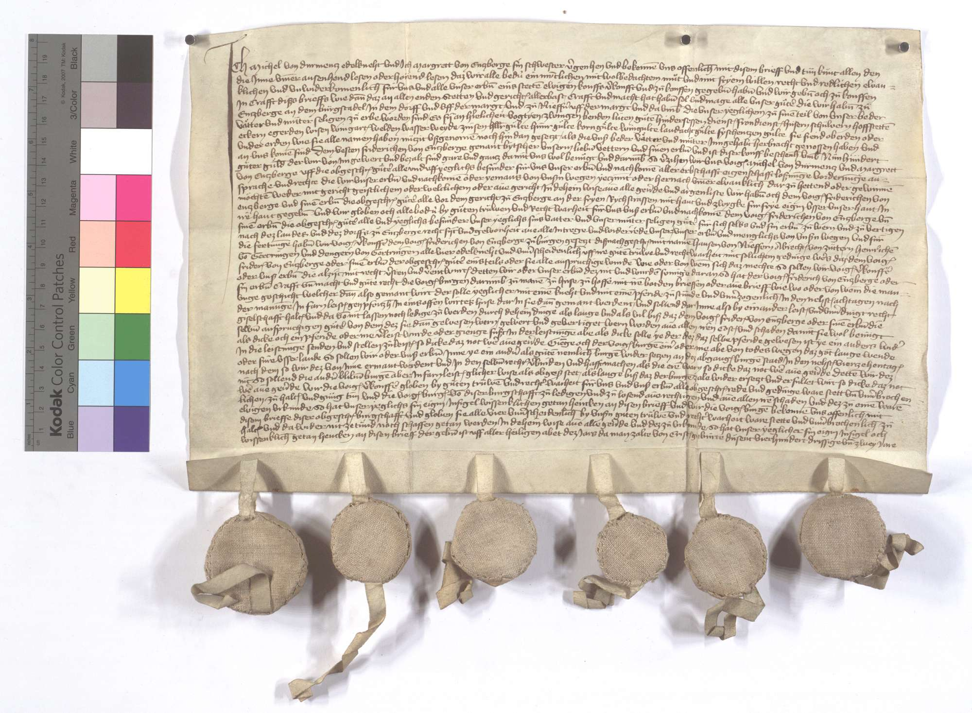 Michael von Dürrmenz verkauft sein Einkommen und Gerechtsame in Enzberg und Niefern an Friedrich von Enzberg., Text
