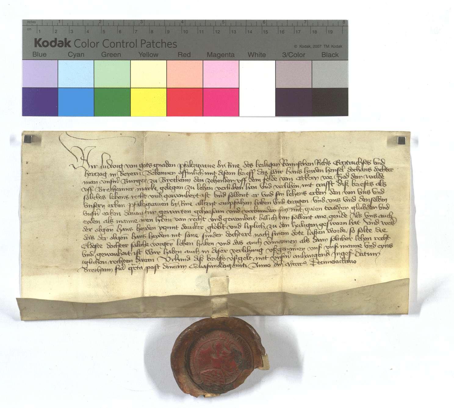 Kurpfälzischer Lehensbrief für Hans Heyden von Bretten (Brettheim) um den Zehnten von den Äckern vor dem Ruiter Wald (Ried dem Walde)., Text