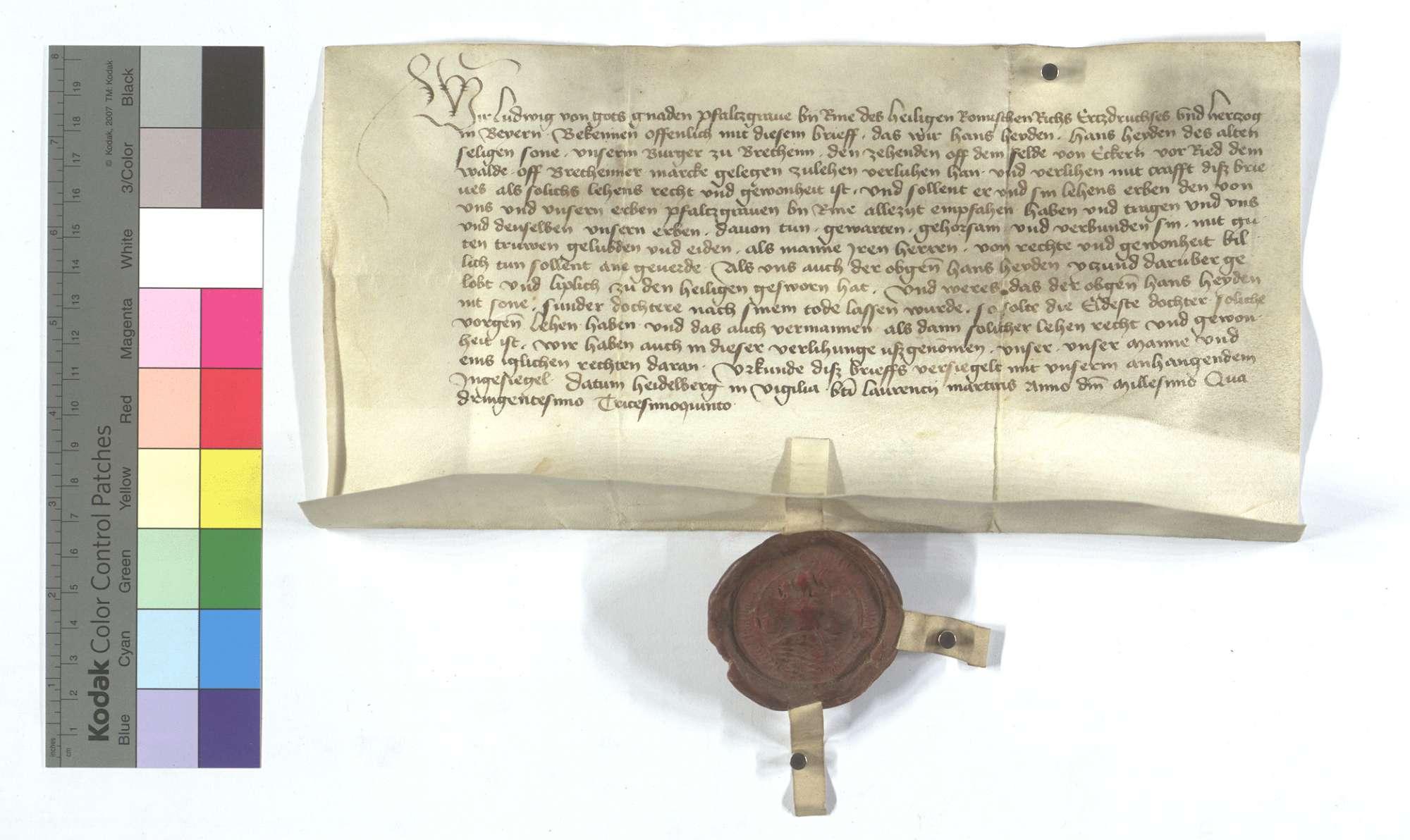 Kurpfälzischer Lehensbrief für Hans Heyden von Bretten (Brettheim) um den Zehnten von den Äckern vor dem Ruiter (Rieder) Wald., Text
