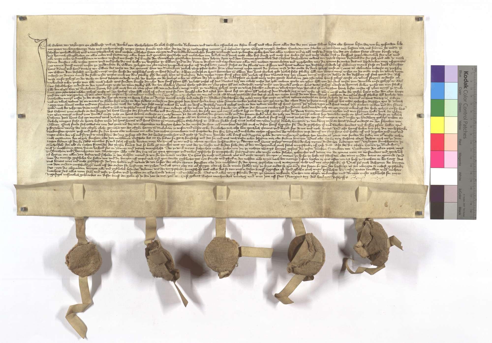 Erhard von Itzlingen (Ützlingen) verkauft dem Kloster Maulbronn seine Güter, Zinsen und Gülten in Bauschlott, Ölbronn und Ruit (zu der Rüti) mit Ausnahme etlicher Morgen Wiesen., Text