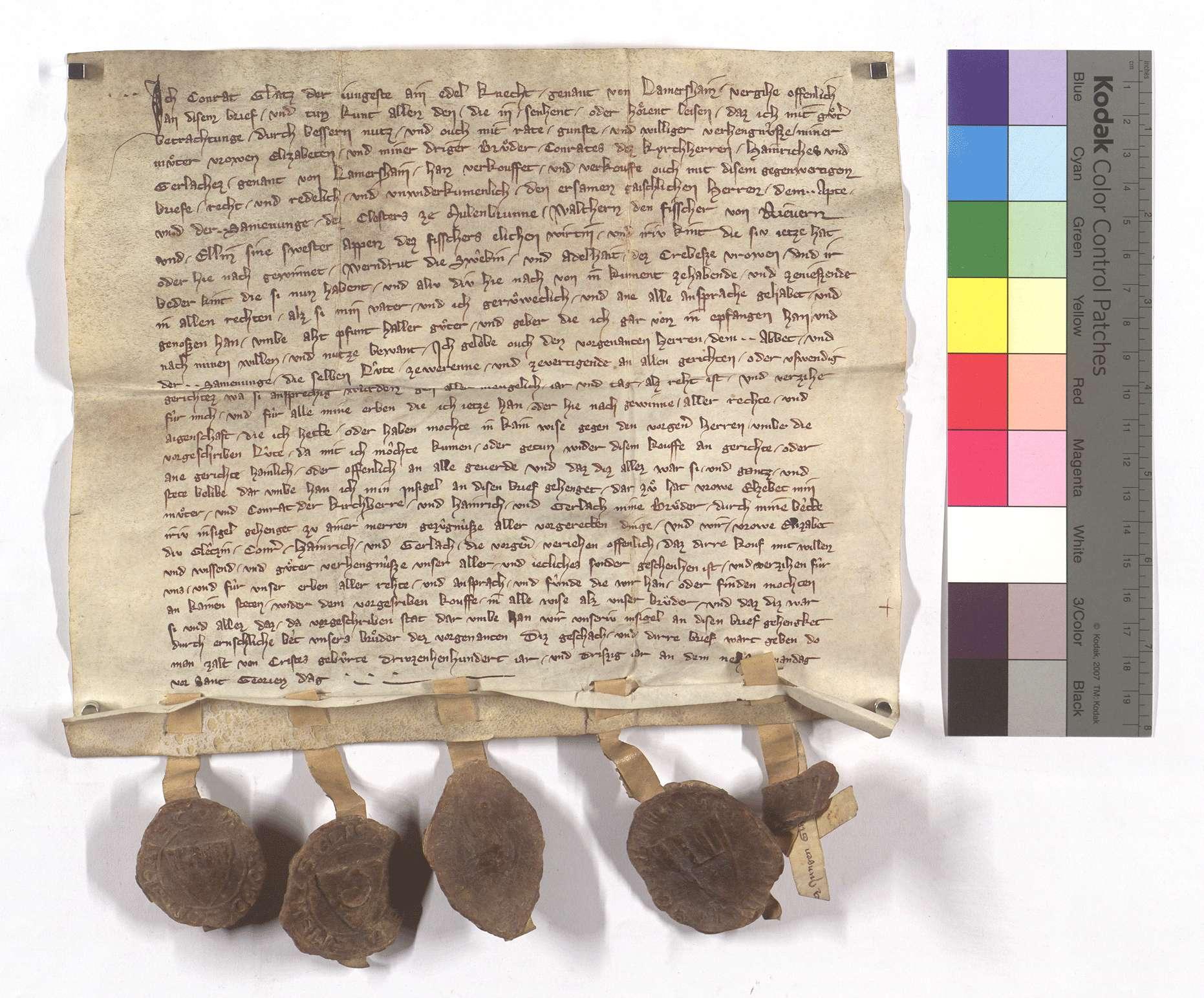 Fertigung des Conrad Glatz des Jüngeren von Lomersheim um etliche Leibeigene in Niefern (Nufern)., Text