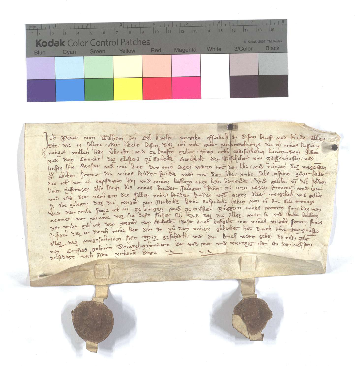 Fertigung des Peter von Talheim um einen Leibeigenen in Zaisenhausen., Text