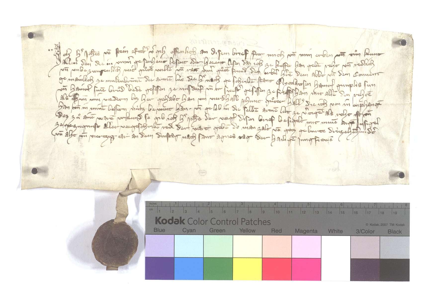 Fertigung des Johann vom Stein gegen das Kloster Maulbronn um drei Leibeigene zu Nußdorf und Friolzheim., Text