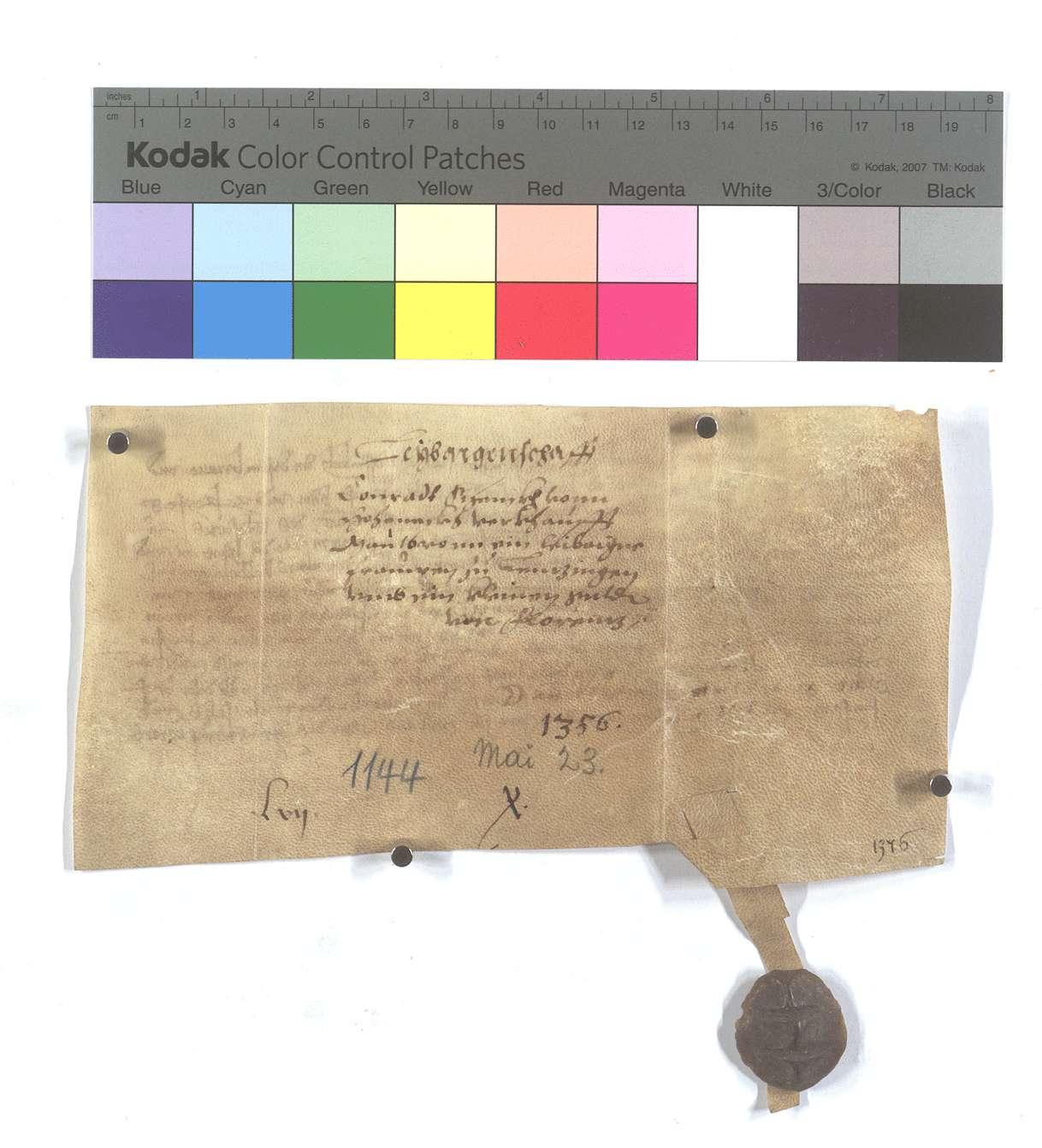 Fertigung des Conrad Schenk von Hoheneck um eine leibeigene Frau in Lienzingen., Rückseite