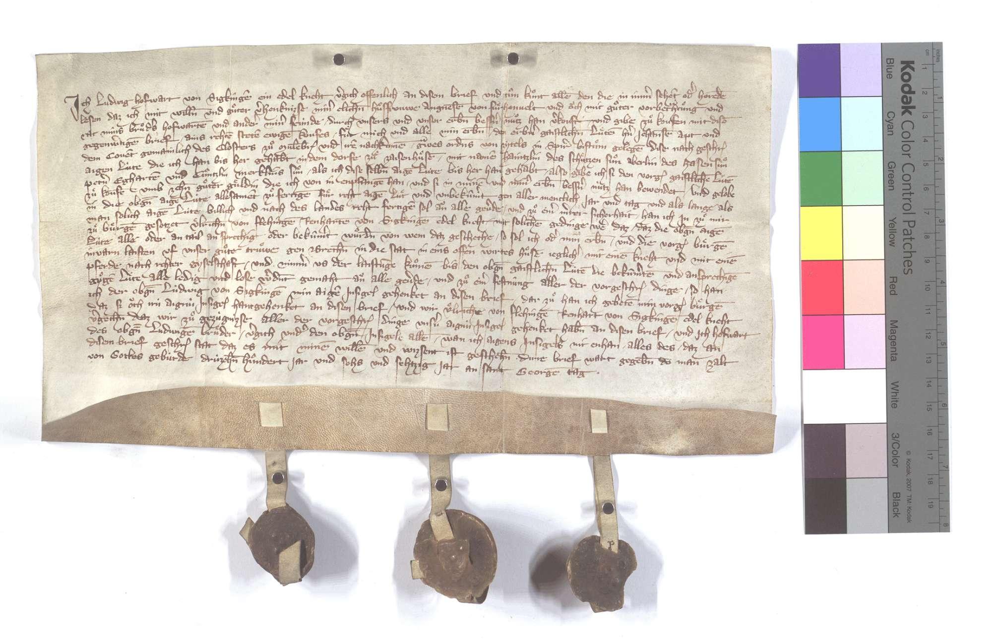 Fertigung des Ludwig Hofwart von Sickingen um seinen Leibeigenen in Zaisenhausen., Text