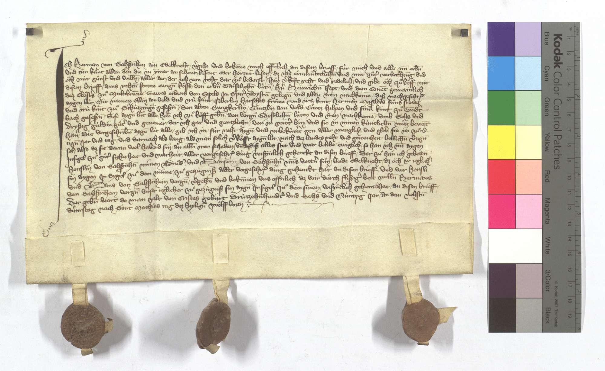 Fertigung des Hermann von Sachsenheim um seine Leibeigenen in Schützingen (Schüzingen) und Gündelbach., Text