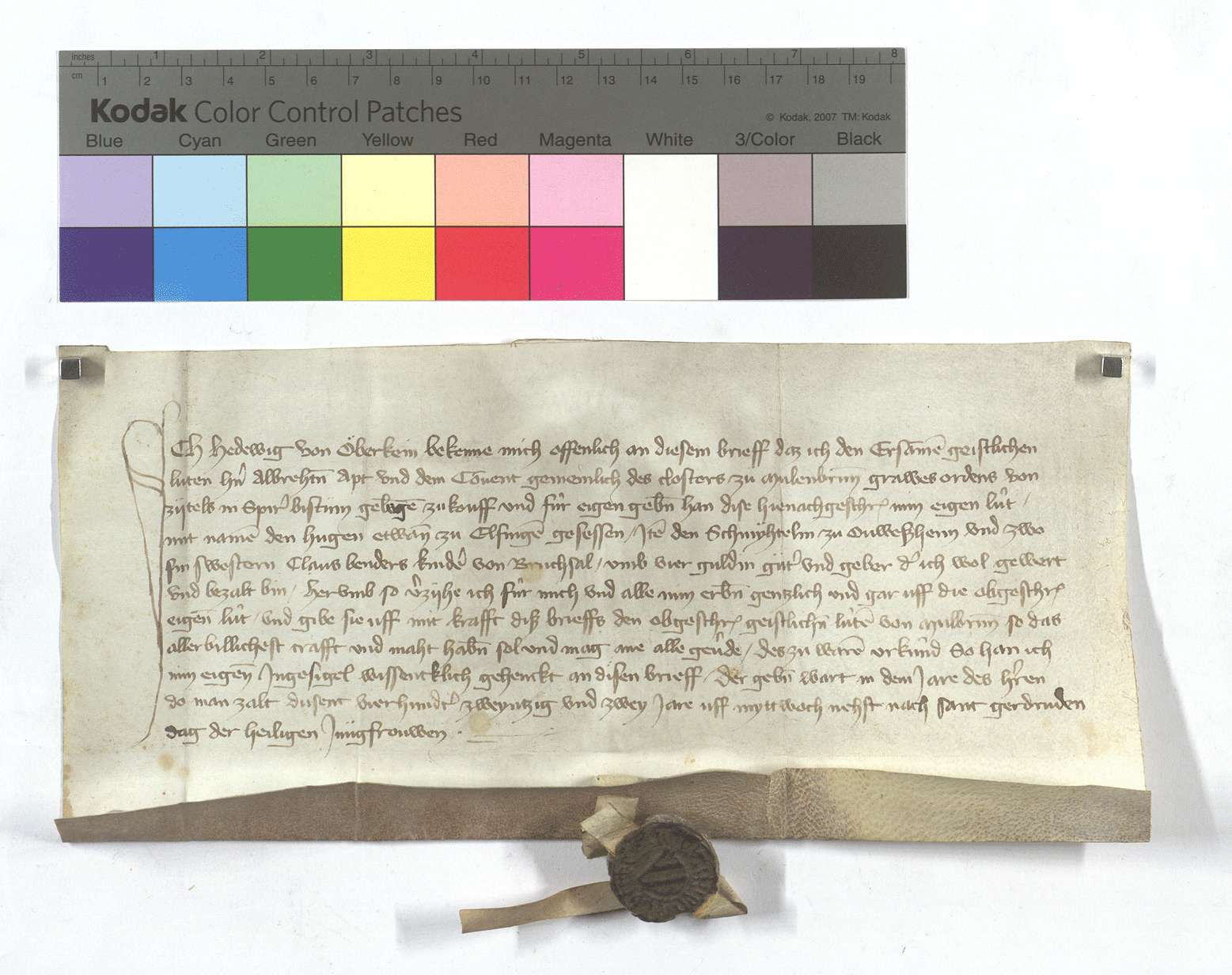 Fertigung der Hedwig von Obrigheim (Öberkein) um ihre Leibeigenen in Flehingen, Unteröwisheim (Öwisheim) und Bruchsal., Text