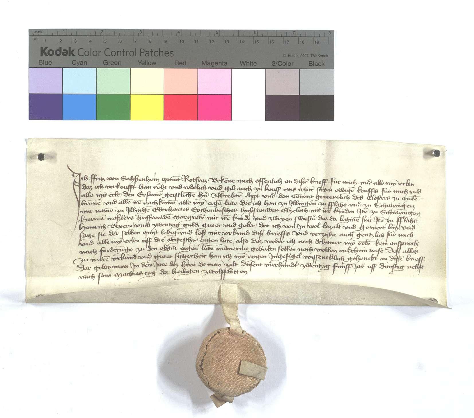 Fertigung des Fritz von Sachsenheim, genannt Rotfritz, um etliche Leibeigene in Illingen, Flacht und Schützingen (Schüzingen)., Text