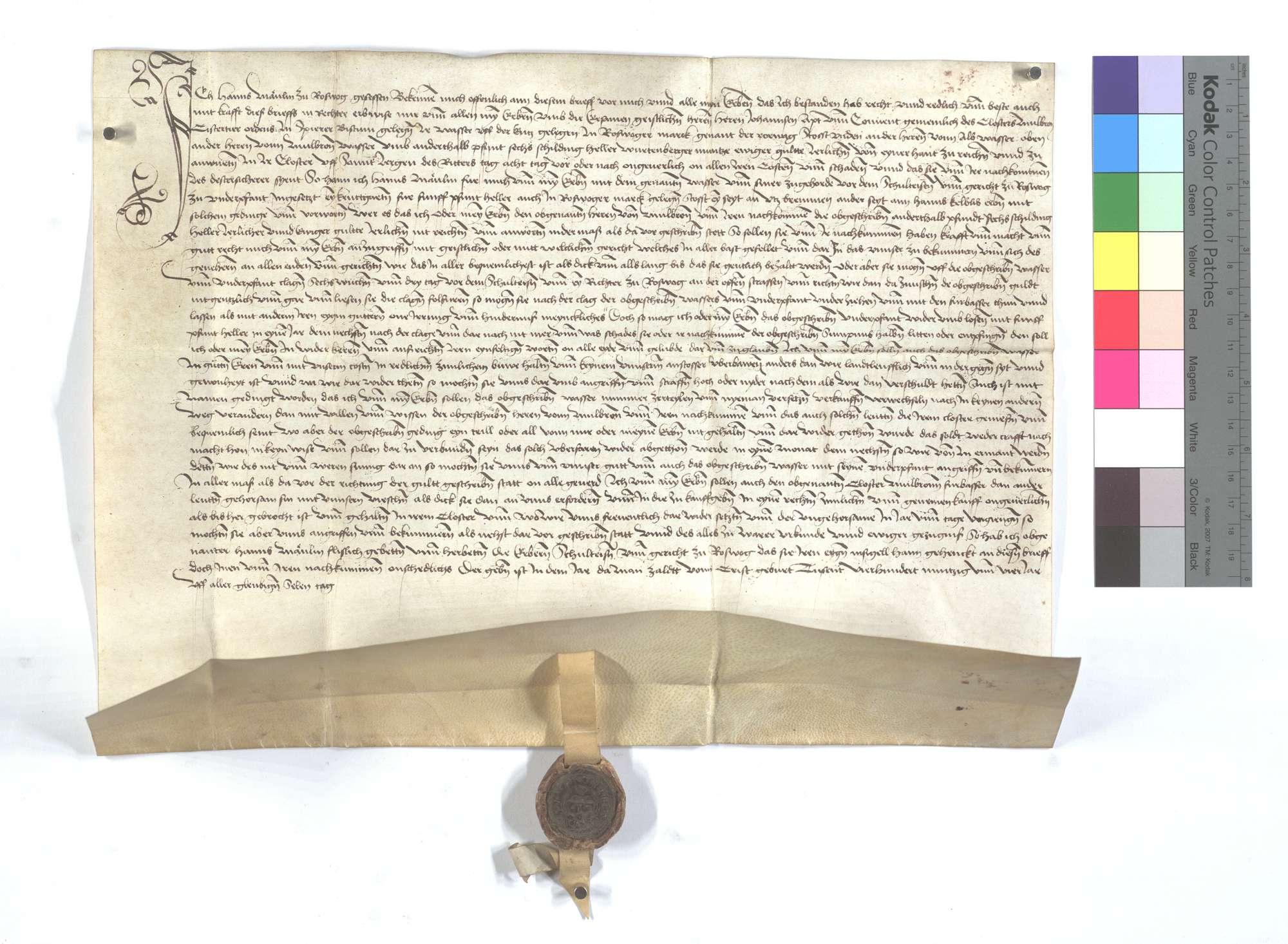 Lehensrevers des Hans Mänlin in Roßwag um das Fischwasser des Klosters Maulbronn dort., Text