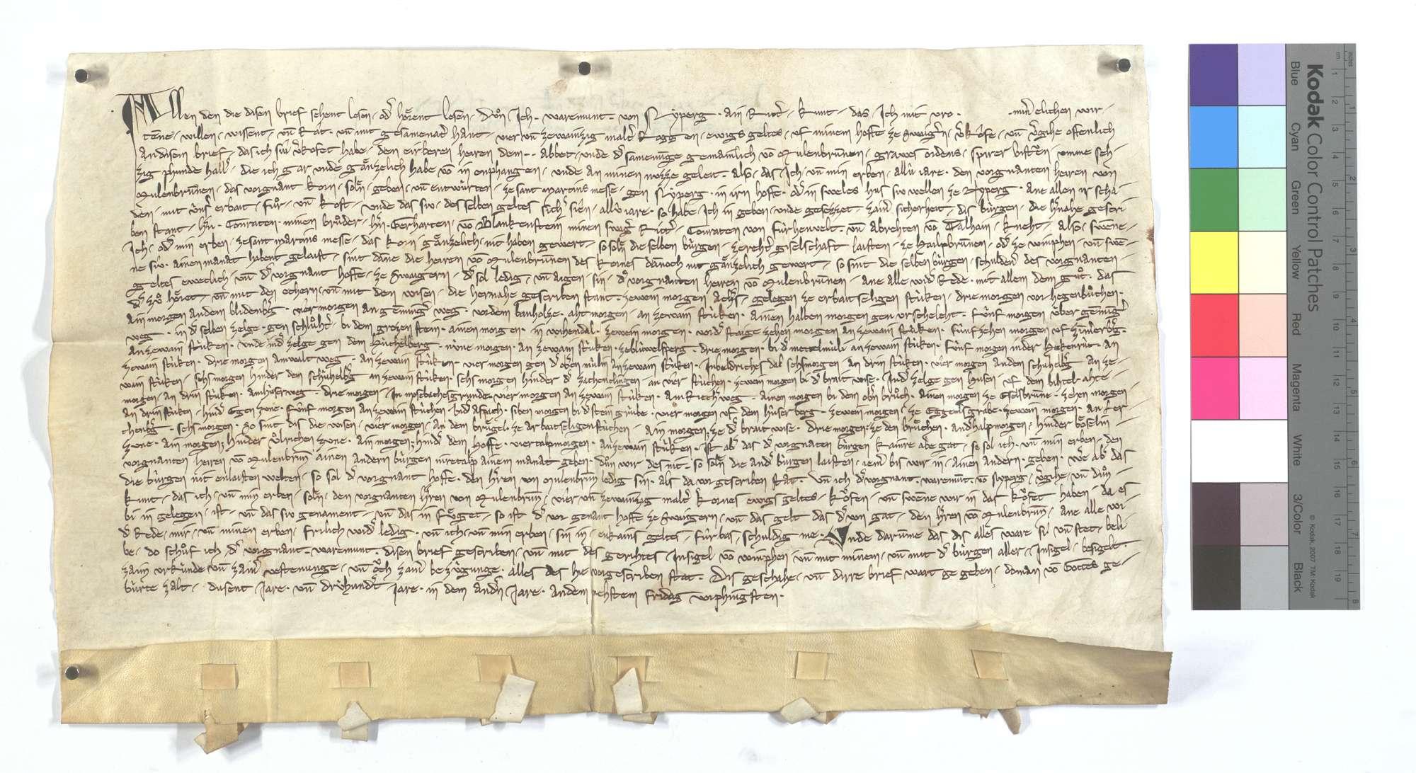 Warmund von Neipperg verkauft dem Kloster Maulbronn 24 Malter Roggen ewige Gült aus seinem Hof zu Schwaigern., Text