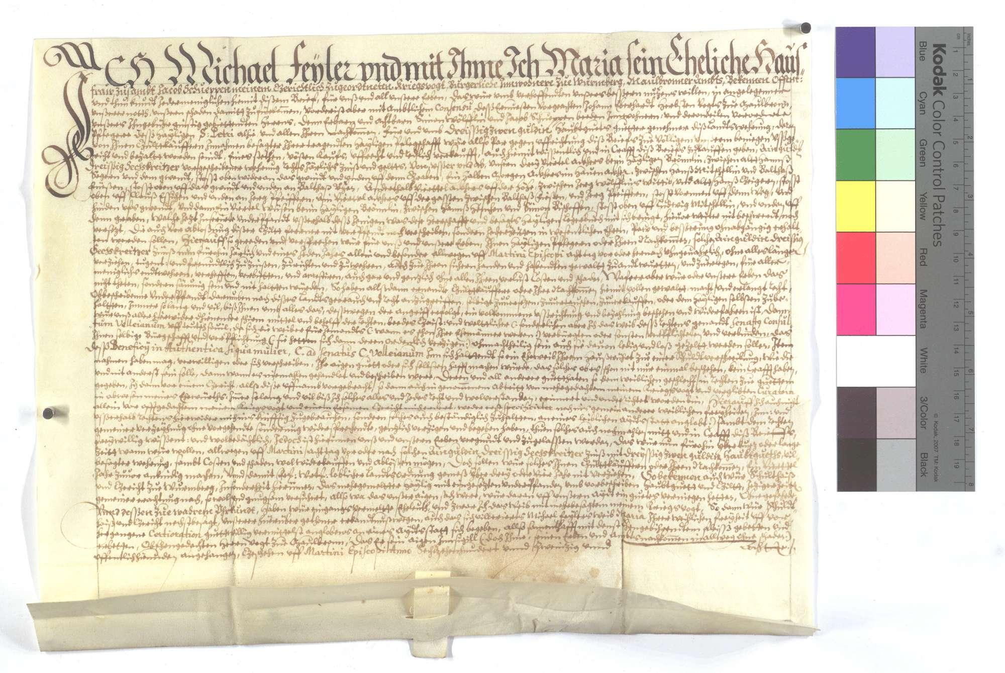 Verschreibung Michael Feylers und seiner Frau auf Martini 1 Gulden 36 Kreuzer., Text