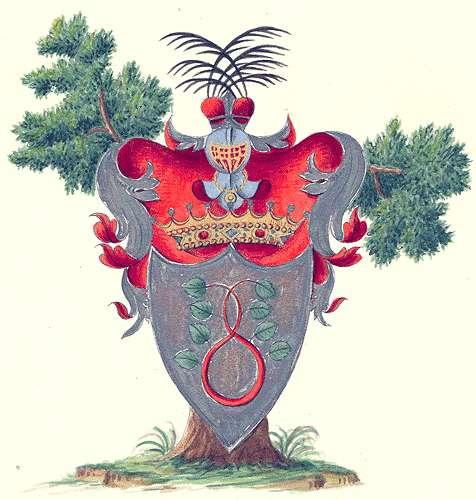 Seckendorf, Grafen von Aufnahme der Grafen von Seckendorf in die Adelsmatrikel, Bild 1