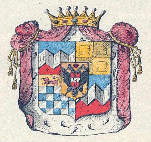 Ulm-Werrenwag, von Aufnahme der Freiherren von Ulm in die Adelamatrikel und familiäre Veränderungen, Bild 1