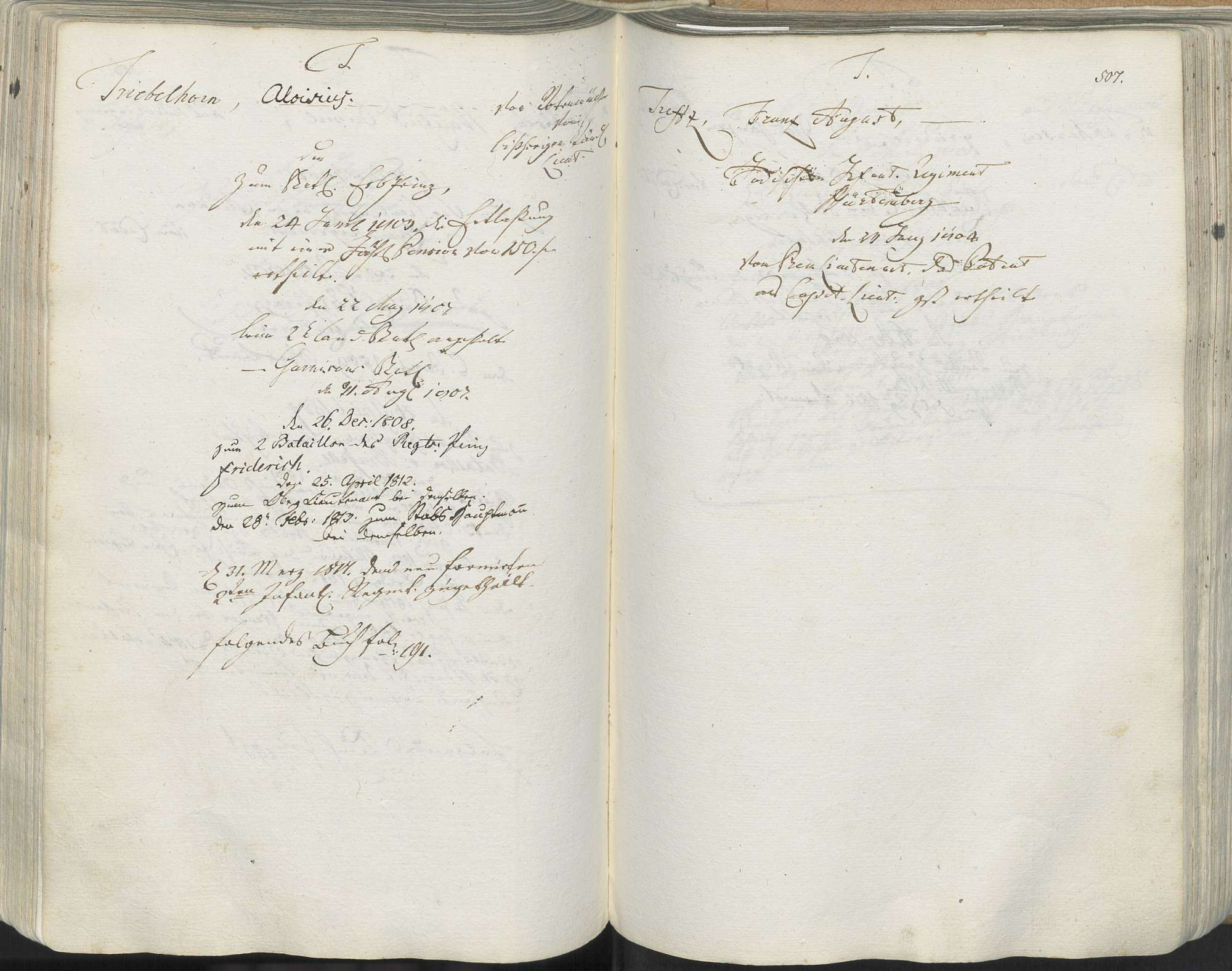 Triebelhorn, Aloisius, Bild 1