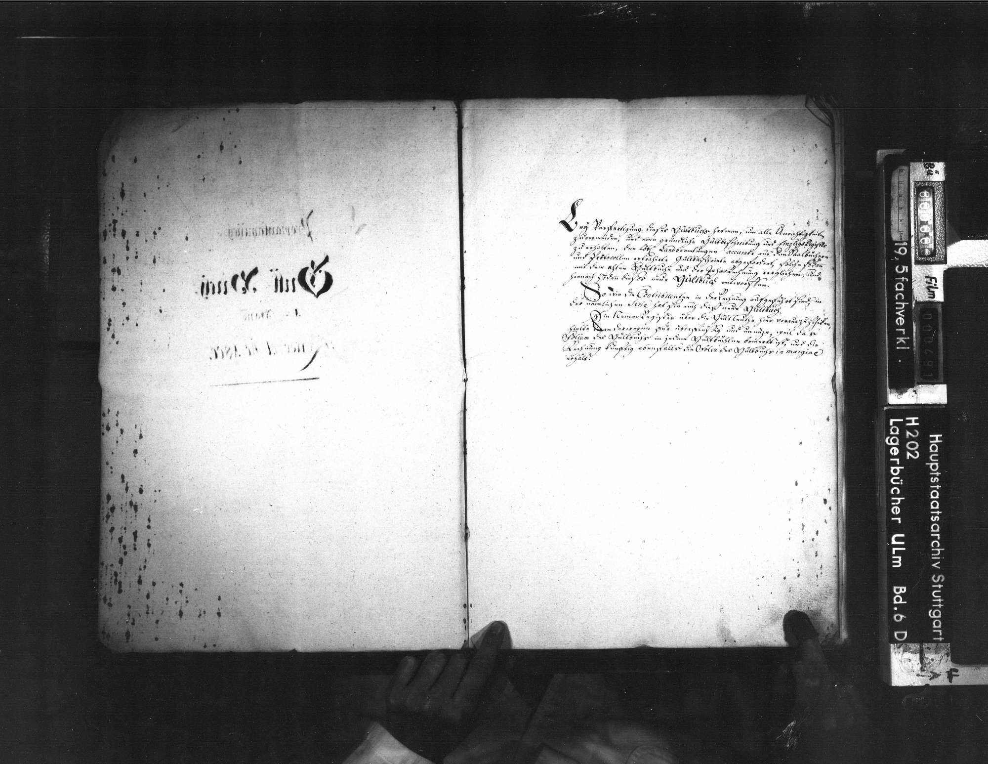 Gültbuch, Bild 2